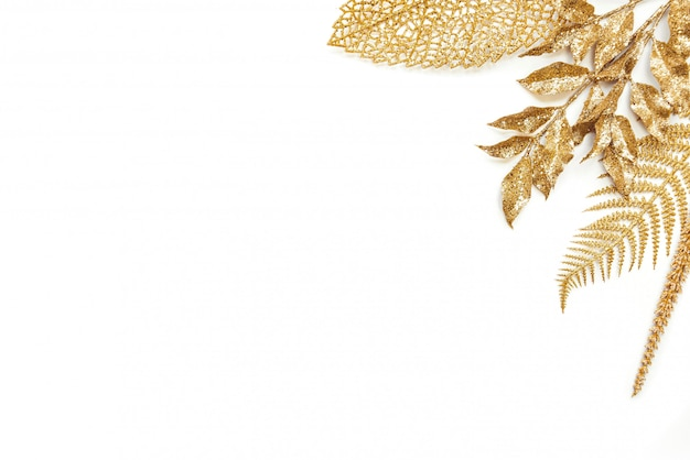 Golden laurel and fern leaves on white. copy space.