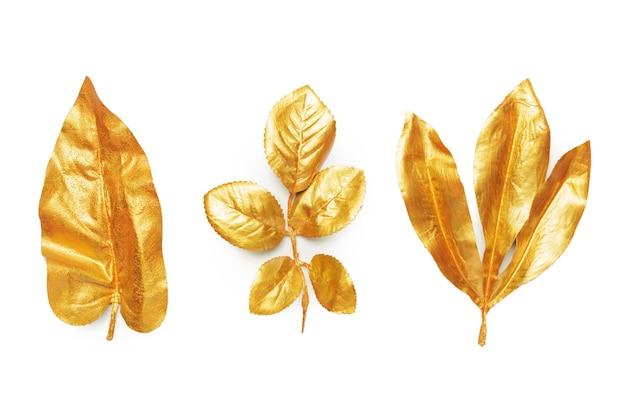 황금 잎 디자인 요소입니다.