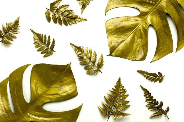 Золотые листья на белом фоне.