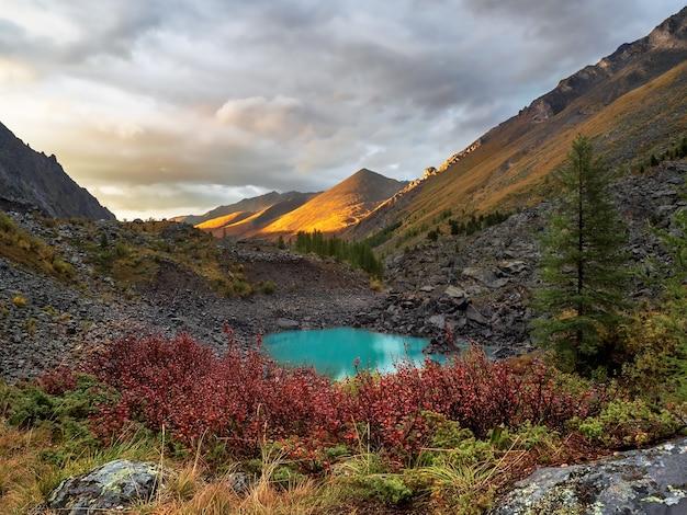 秋の山の谷に夕日の黄金の光が降り注ぐ。黄金の日差しの中で岩と夜の山の風景。鋭い岩と緑の森と岩山の壁の自然の背景。