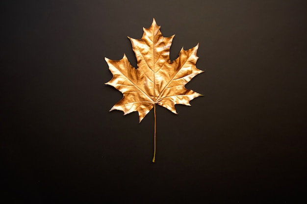 Golden maple leaf on a black background