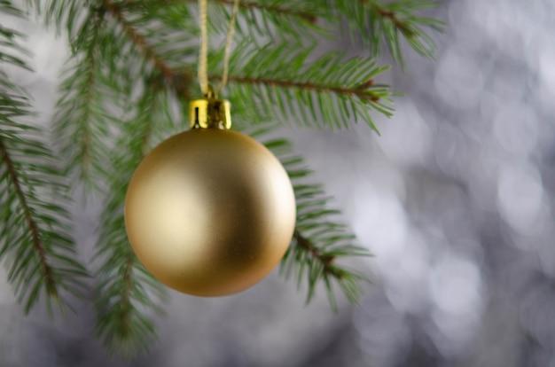 Золотой матовый елочный шар на пушистой еловой ветке. новогоднее украшение.