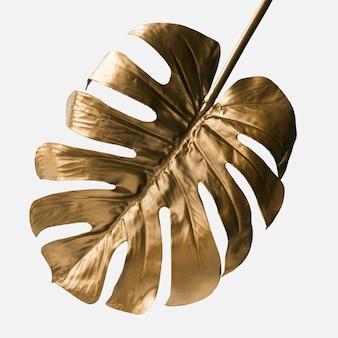 Golden monstera leaf on a white background mockup
