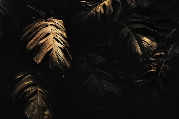 Golden monstera leaves background design resource
