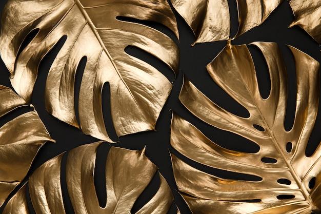 Golden monstera leaves on black background