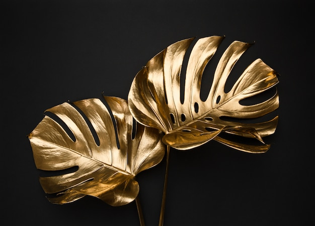 Golden painted tropical monstera leaves