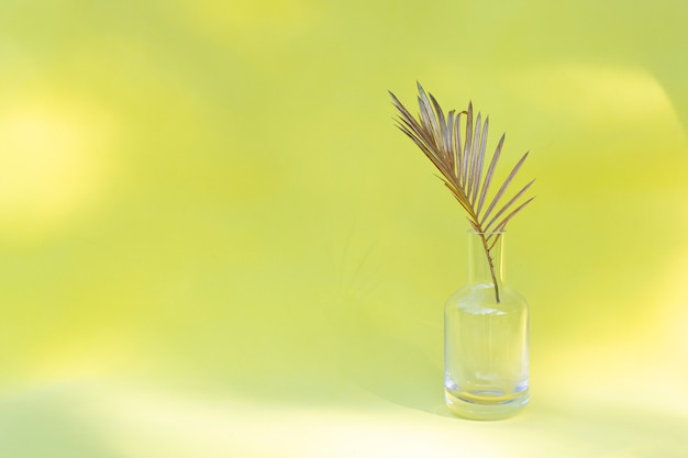 Golden palm leaf in glass vase on creative minimal style