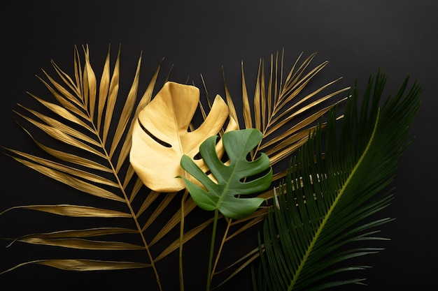 Golden palm leaf and green fresh tropical monstera leave texture on dark black background. painted gold leaves and green tropical plants on summer floral background.
