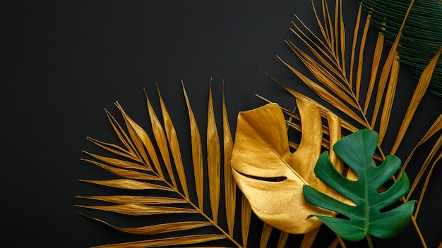 Golden palm leaf and green fresh tropical monstera leave texture frame on dark black background with copy space. painted gold leaves forest pattern on summer nature floral background. long web banner.