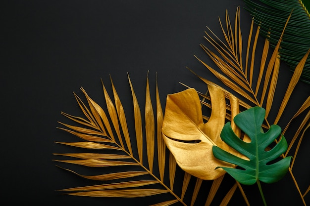 Golden palm leaf and green fresh tropical monstera leave texture frame on dark black background with copy space. painted gold leaves forest pattern on summer nature floral background.