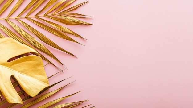 Золотой пальмовый лист, рамка из тропических листьев на розовом фоне copyspace. летняя золотая цветочная рамка