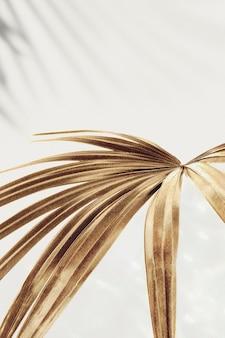 Golden palm leaves background design resource