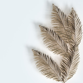 Golden palm leaves on white background