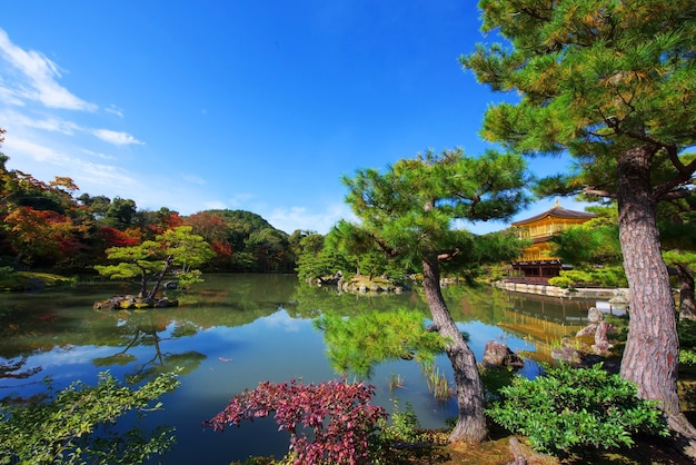 Golden pavilion or kinkakuji temple with fall colors on kyoto, japan.