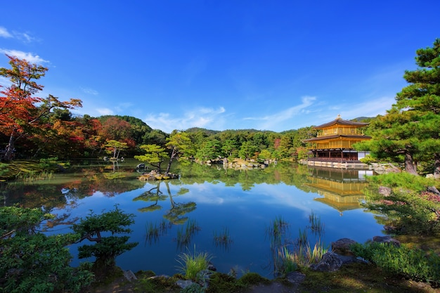 Золотой павильон храма кинкакудзи с осенними цветами листвы вокруг пруда с отражением на линии горизонта, киото, япония. известный туристический ориентир в рокуонджи в кансай.