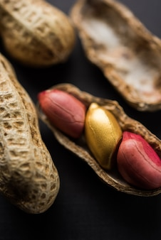 Golden peanut or ground nut showing concept of fortune, individuality, luck, value, exclusivity and better choice. selective focus