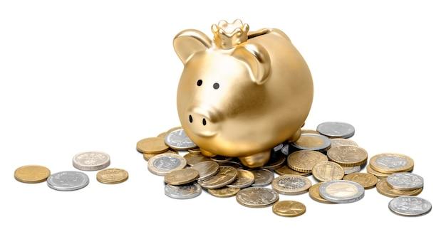 황금 돼지 저금통과 동전