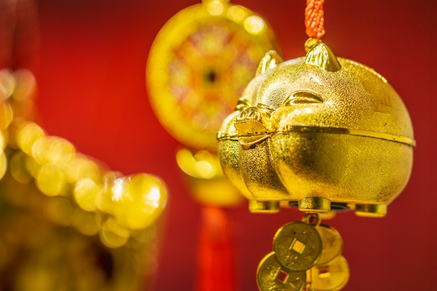 Golden pigs on a red background