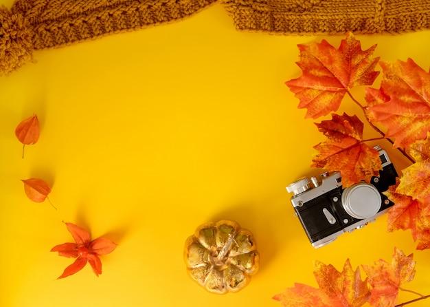 葉のカエデ、黄色の背景にカメラと黄金のカボチャ。平干し。
