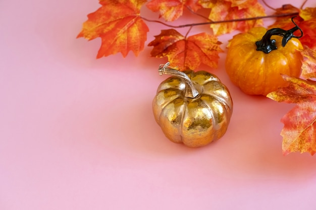 Golden pumpkin with a leafs maple on pink background.