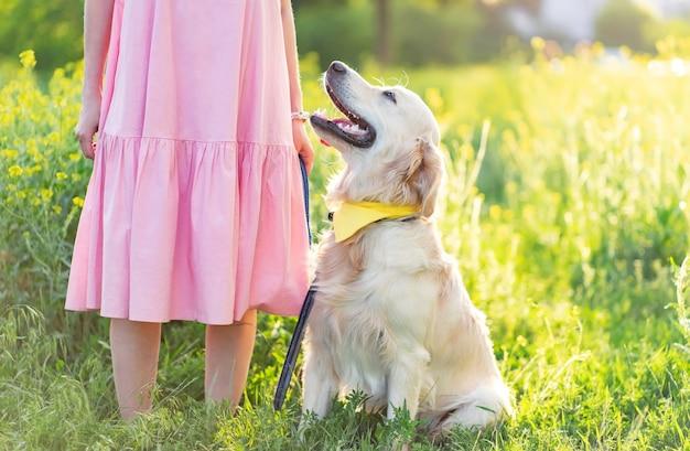 Золотистый ретривер собака сидит рядом с женщиной