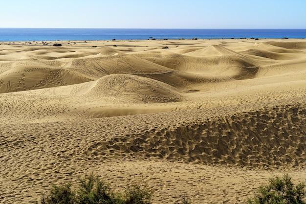 ヨーロッパ、グランカナリア島のカナリア諸島の青い海の隣にある黄金の砂丘砂漠。スペイン。