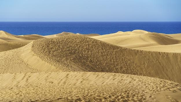 スペイン、グランカナリア島のカナリア諸島の青い海の隣にある黄金の砂丘砂漠。ヨーロッパ
