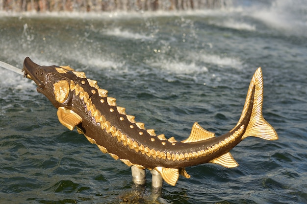 Golden sturgeon in the fountain at vdnh