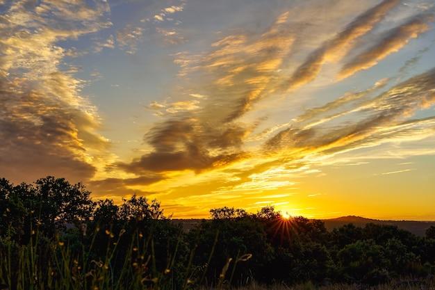 Золотой восход солнца в поле с красочными облаками.