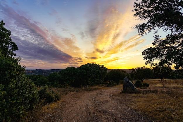 Золотой восход солнца в поле с каменистой грунтовой дорогой