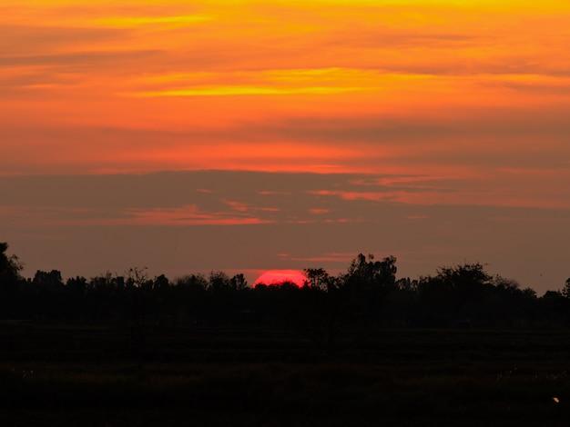 Golden sunrise sky.