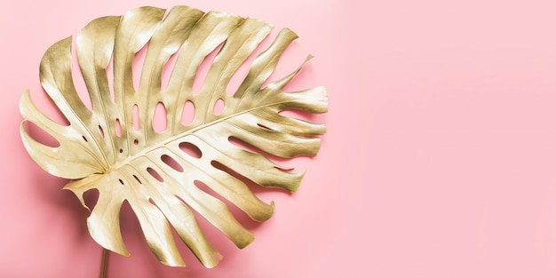 Golden tropical palm leaf monstera on luxury pastel pink.