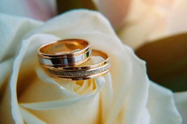 Золотые обручальные кольца на светло-бежевых розах