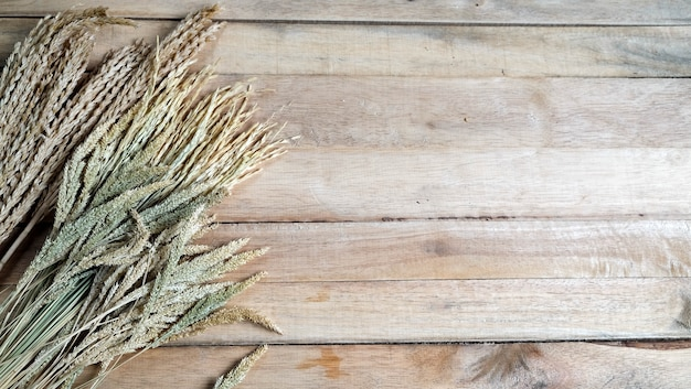 Golden wheat on the wood background. rich harvest concept.