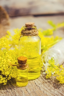 Goldenrod herb for the treatment decoction, tincture, extract oil.