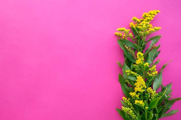 Fiori di verga dorata su sfondo rosa