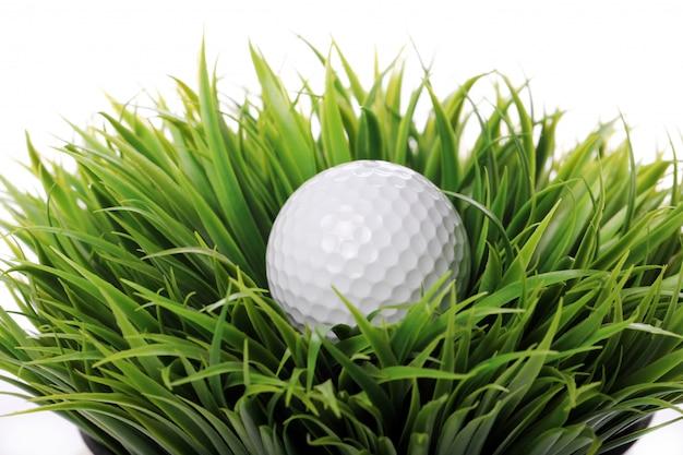잔디에서 골프 공