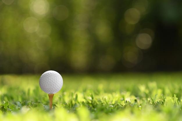 Мяч для гольфа на зеленой траве с полем для гольфа