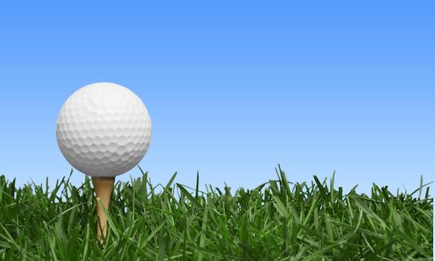 골프 코스에서 티에 골프 공