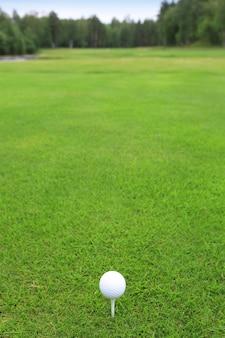 ゴルフコースの緑の芝生のティーにゴルフボール