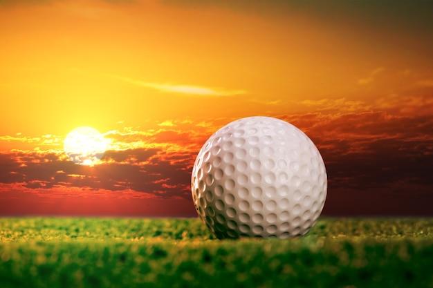 Мяч для гольфа на лужайке в свете заката