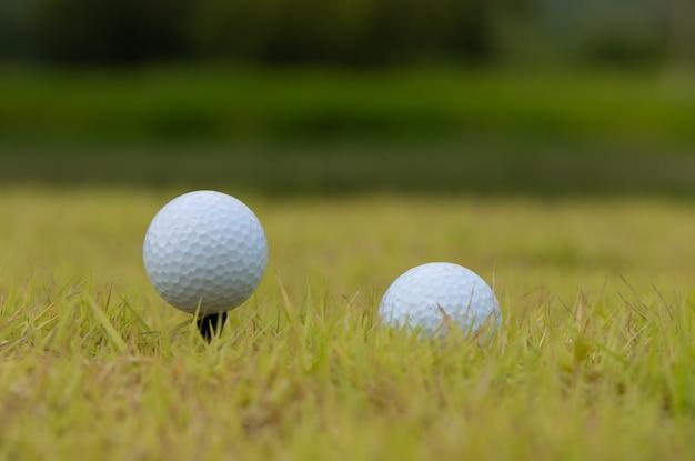 Golf ball on tee green