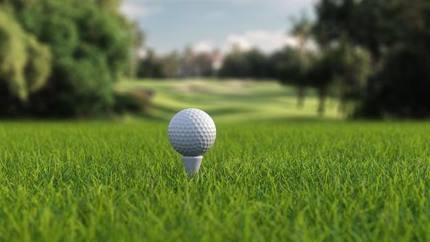 필드에 클럽이 있는 골프 공