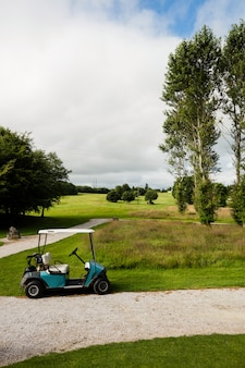 Golf cart in golf course