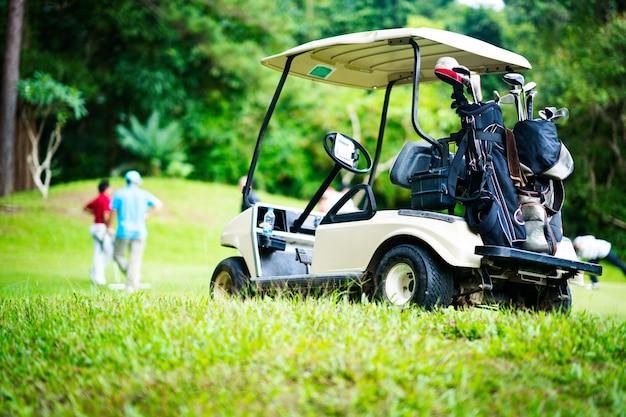 Golf cart for golfer
