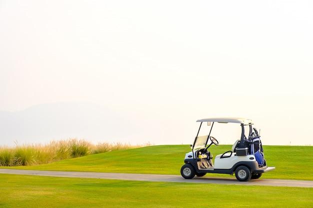 녹색 마당에 골프 카트