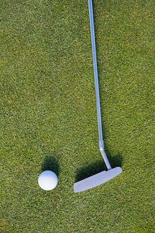 Golf club and ball on grassy field