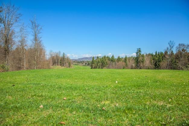 日当たりの良い夏の日にスロベニア、オトセックのゴルフコース