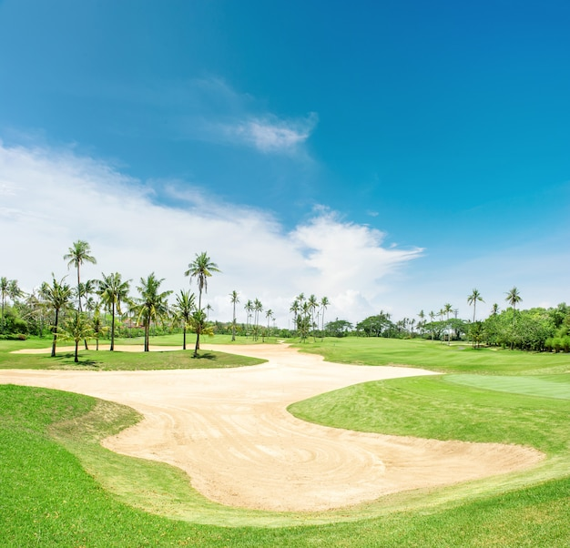Golf course sand trap palm trees