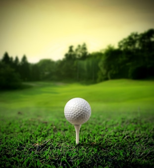 Golf field with a ball